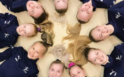 Mariehamns Gymnastikförbund